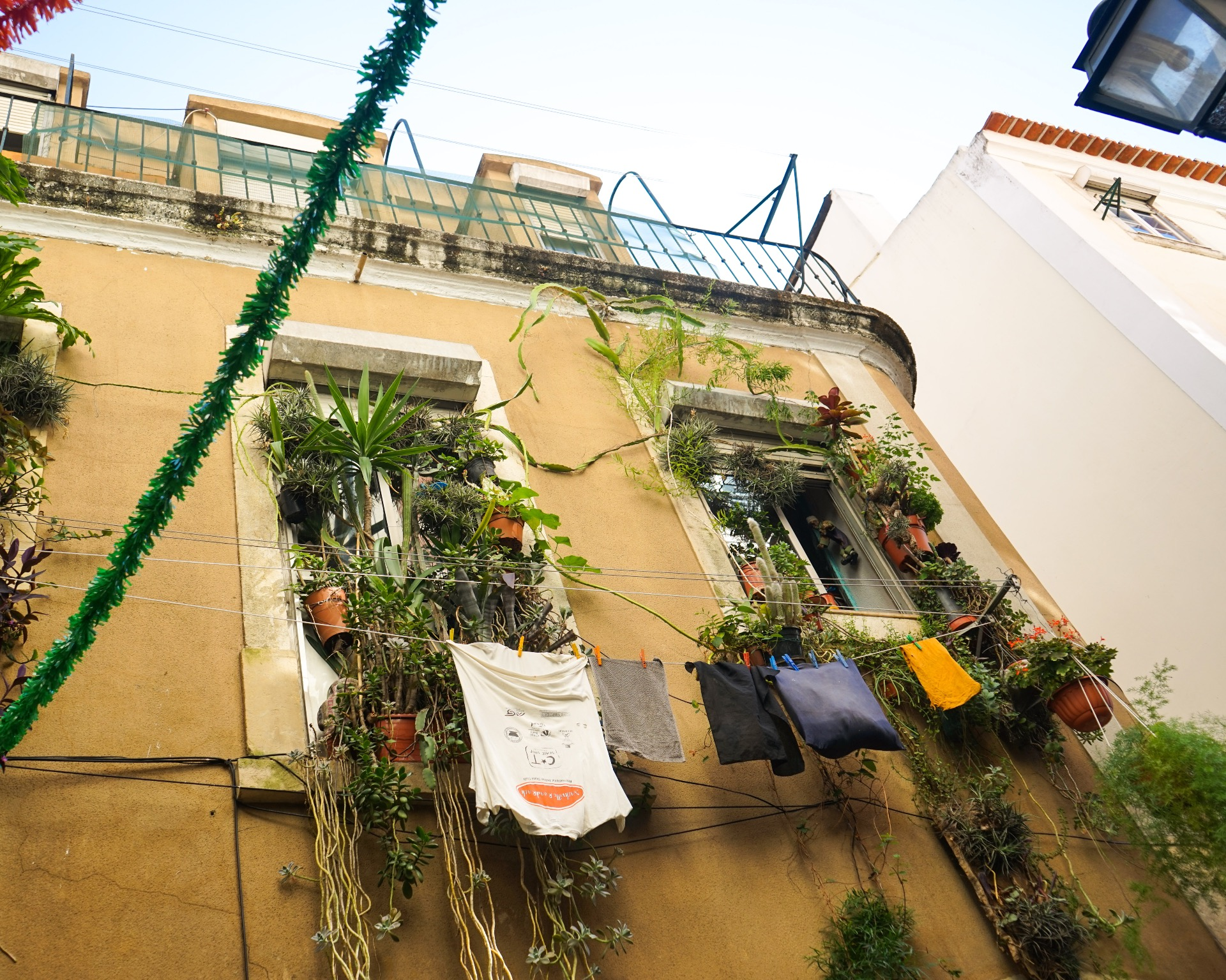 samesame coliving Lisbon city creative co-living coliving lisbon